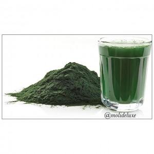 Chlorella como detoxificador